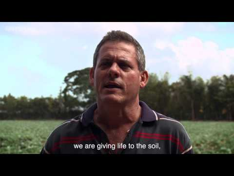 Mayan Farmers Visit Cuban Farms