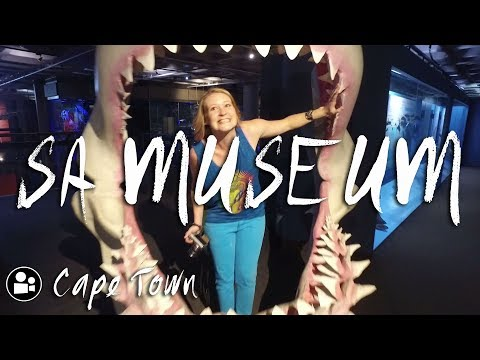 The South African Museum | Things to do in Cape Town