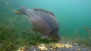 The Czech underwater - the secret of new gravel pit