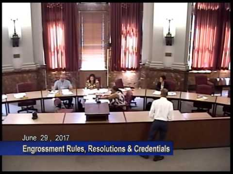 Engrossment Rules, Resolutions & Credentials - June 29, 2017