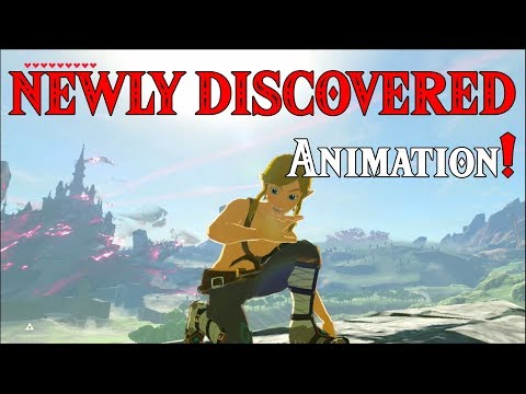 NEWLY DISED Animation! Links Hand HURTS in Zelda Breath of the Wild