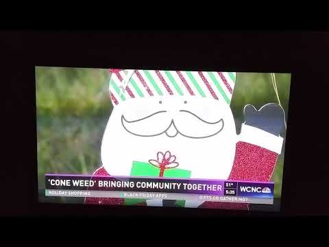 "David Britt's segment on NBC Charlotte about his song: ""The Cone Weed Christmas Song"" #ConeWeed"