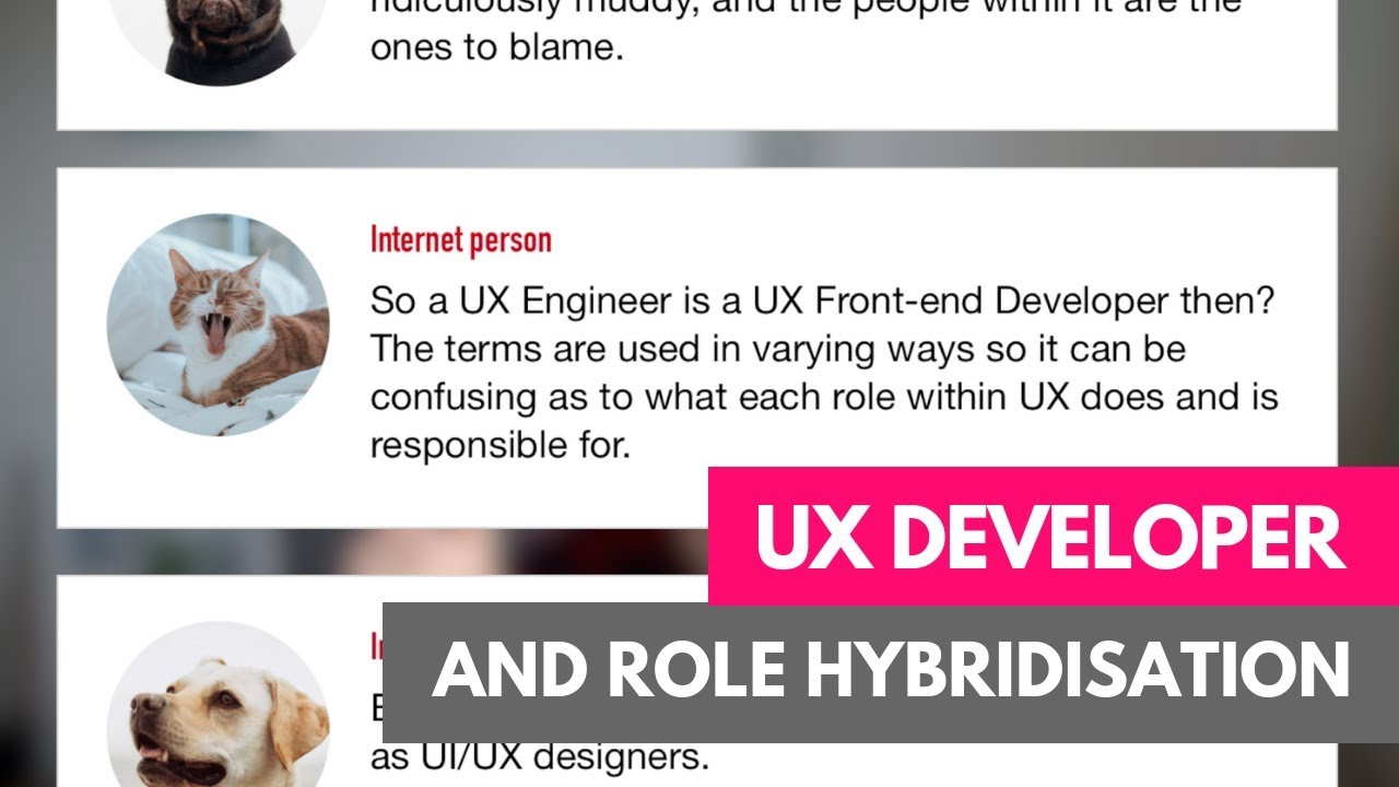 Ui Ux Developer >> Ux Developer Whose Legos Are They Anyways Vaexperience Blog