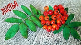 листья рябины из фоамирана / Как сделать рябину своими руками