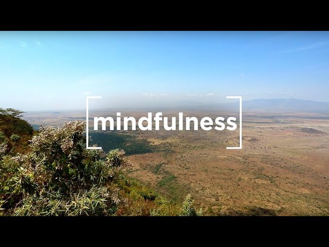 Henry David Thoreau on Mindfulness