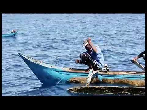 Comoros : the fish, hygiene & the community