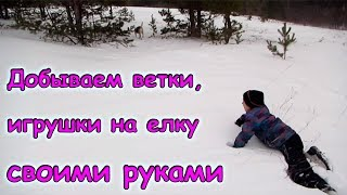 Робимо іграшки на ялинку. Збір гілок в лісі. (12.17 р.) Сім'я Бровченко.