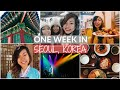 ONE WEEK IN SEOUL | STREET FOOD | TRAVEL VLOG | MYEONGDONG SHOPPING | NORTH KOREA DMZ