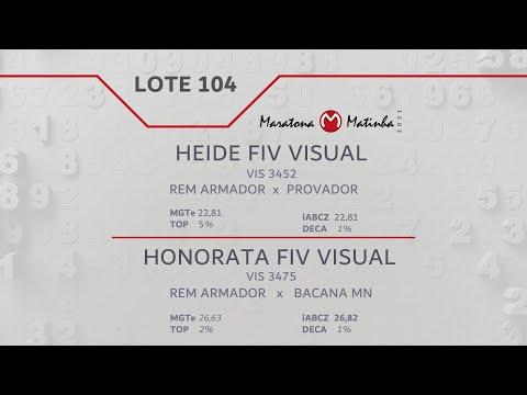 LOTE 104 Maratona Matinha