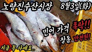 노량진수산시장 민어가격 급락!…