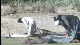 taliban performing namaz
