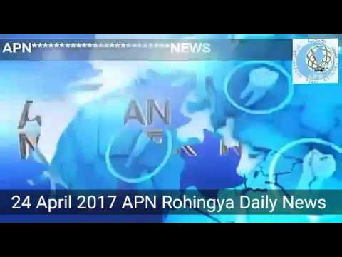 Rohingya Daily News 24 April 2017 Arakan Press Network News