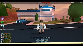 how to kind of look like badcc in roblox