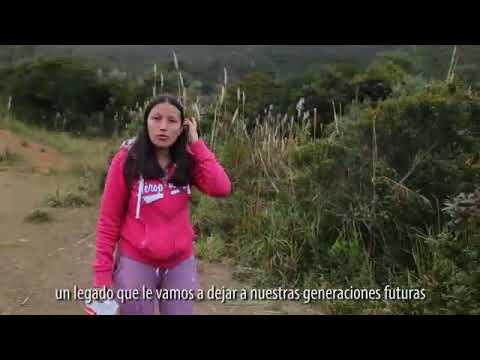Educación financiera para jóvenes Gualaceo