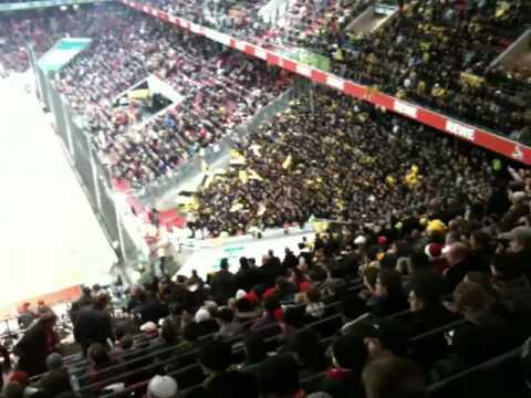 1.FC Köln -Borussia Dortmund: Hurra Hurra