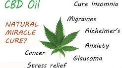 CBD Oil is a Cannabinoid derived from the Cannabis plant, and is Amazing!