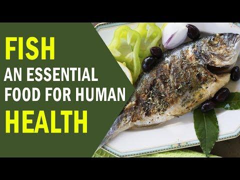 Short Sayings | Eat Fish | An Essential Food | Food For Human Health | Maulana Ilyas Qadri