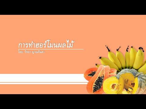 การทำฮอร์โมนผลไม้