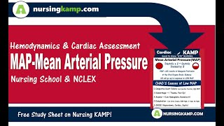 Hypotension NCLEX Review What is Mean Arterial Pressure Causes reasons Nursing KAMP MAP