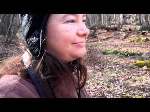 Natureglo's Sit Spot Adventures in WV Dec 22 2011