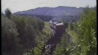 NSB Di 3 641 og 651-602 Holte sf Skogn 1993