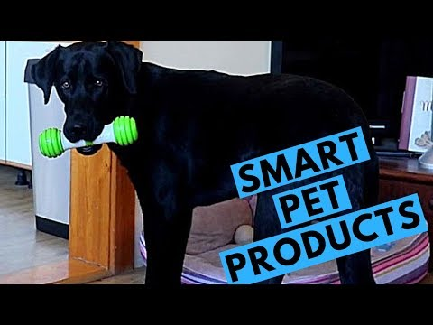 Future of Pet Products? - PetGeek Product Review