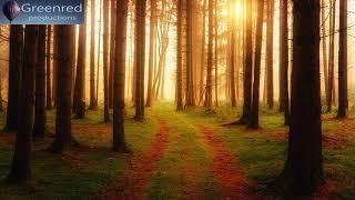 Earth's Vibrational Frequency, Binaural Beats 7.83 Hz Healing Music, Meditation Music