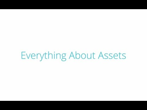 Tutorial : Everything About Assets