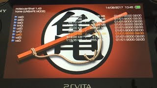 [PsVita] Mémoire MicroSD avec SD2Vita