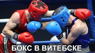 Турнир по боксу в Витебске