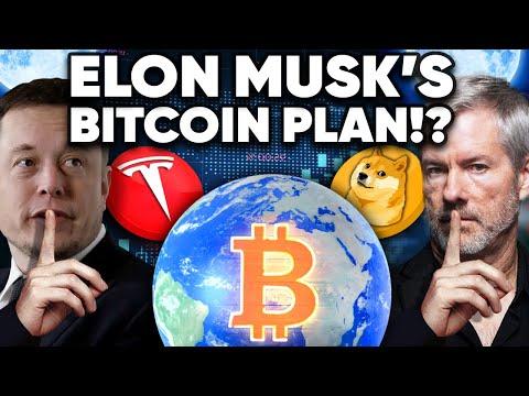 Elon Musk's BIG BTC PLAN!? It Will Change The WORLD!!!