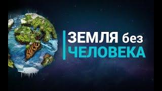 Что если бы Земля существовала без человечества?