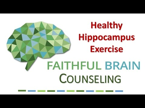 A Brief Introduction to the Hippocampus Exercises