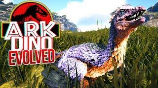 Download Video ARK Dino Evolved - Fugindo Dos Predadores, Arqueópterix, Vida De Dinossauro!   (#1) (PT-BR) MP3 3GP MP4