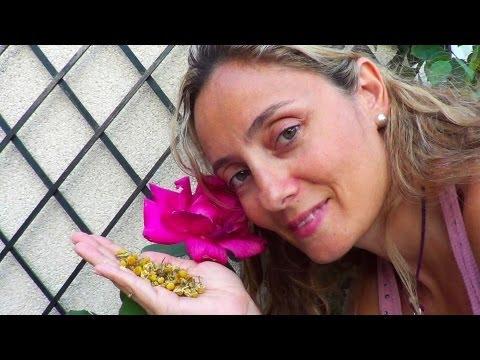 Insecticida biológico para plantas MUY ECONÓMICO PILAR NATURE. / Organic insecticide VERY ECONOMIC