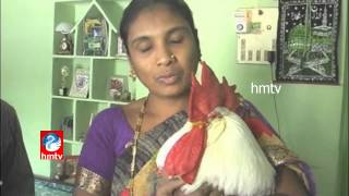 Birthday Celebrations for Hen in Warangal - Hyderabad Dog Obsequies - Group Baby Showers