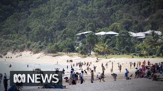 Tangalooma security wrongly told family to leave public beach