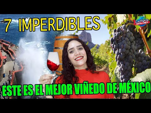 ¿Qué hacer en VALLE de GUADALUPE Baja California? / RUTA DEL VINO