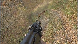 ЗАГОННАЯ ОХОТА НА КОСУЛЮ / БЕЗ ЦЕНЗУРЫ !!! / #Охота / #Hunter / #Hunting / Косуля / Кабан / Олень