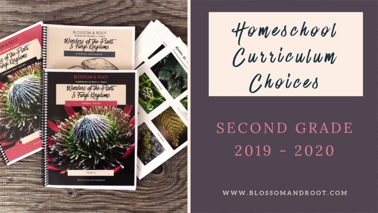 2020 Kitchen Design Manual Our Homeschool Second Grade Curriculum Choices 2019 2020 Blossom