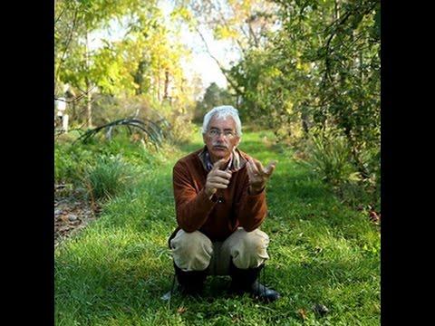 Stéfan SOBKOWIAK Le Verger Permaculturel : Au-delà du Bio