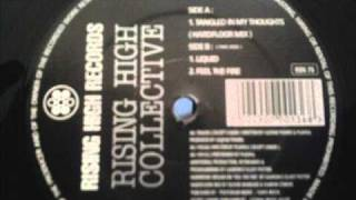 Rising High Collective - Tangled In My Thoughts (Hardfloor Mix)