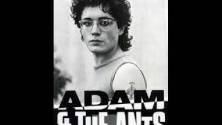 Adam and the Ants - Catch a Falling Star