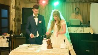 Разрезание свадебного торта Евгений и Ирина 25 06 2016