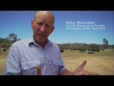 The Fodder Shed: Solving Drought In Australia.