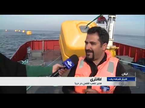 Iran Forty years after revolution, Fish farming & Fish processing پرورش آبزيان چهل سال پس از انقلاب