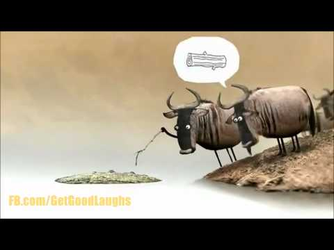 Awesome Animation About Stupidity In Society | Funny VIDEO! :-D| GGL