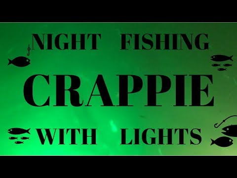 How To Use LIghts To Attract And Catch Fish At Night