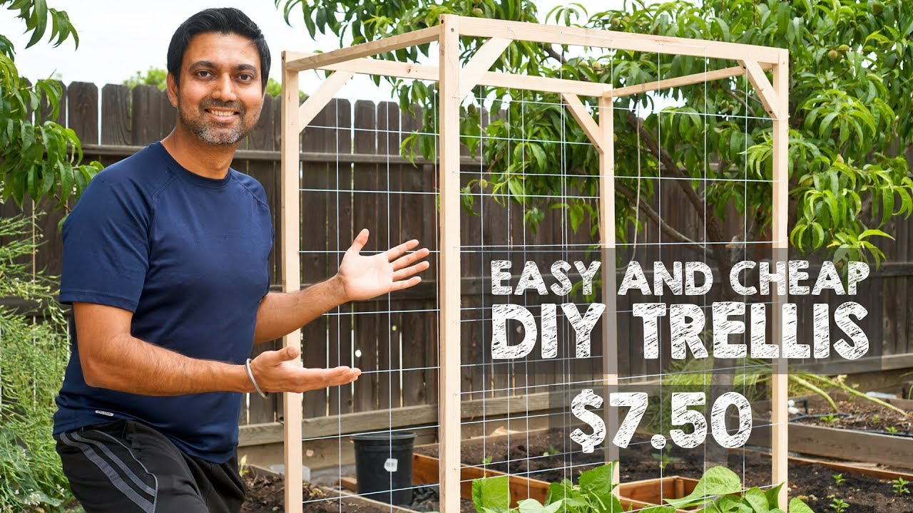 How To Make Easy And Cheap Trellis Youtube