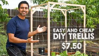Gambar cover How to Make Easy and Cheap Trellis